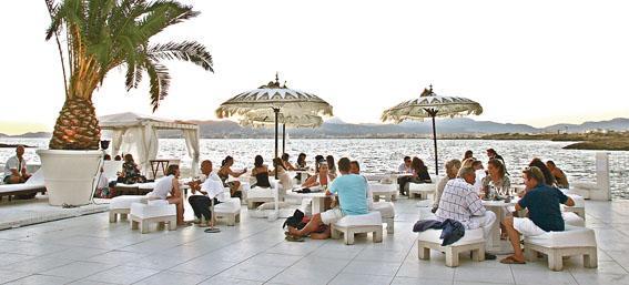 Marbella Local Guide  My Guide Marbella